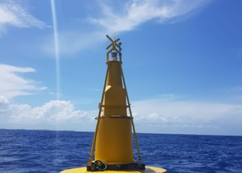 Buoy element of the FAD above water