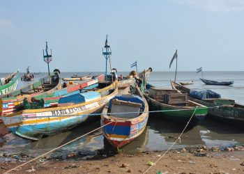 Artisanal Fishing Fleet