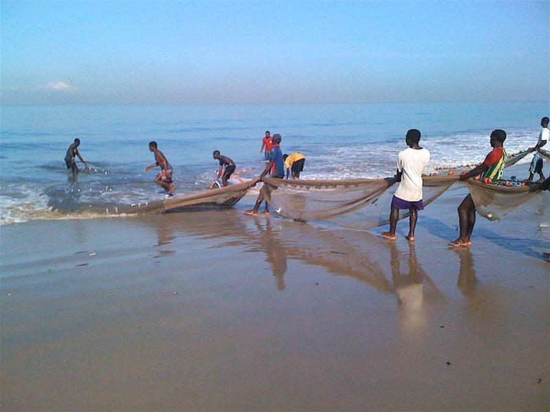 Bringing nets ashore