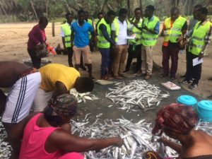 Training in the use of a fisheries data collection application