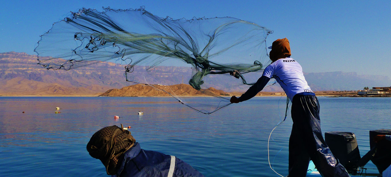 MEP International Fisheries Consultants
