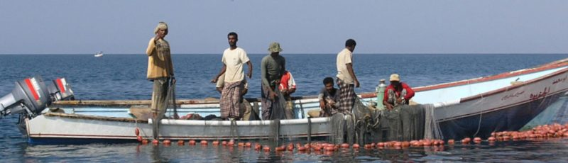 Seine haul fishing, Balhaf, Yemen